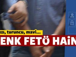 uc_renk_feto_hainligi_h717474_448d3